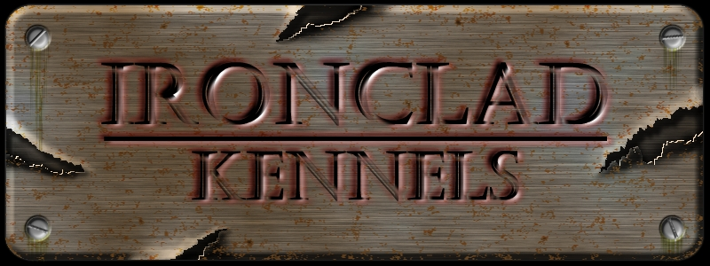 Welcome to Ironclad Kennels - Home of the Best American Pitbull Terriors